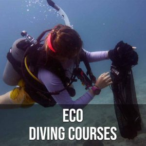 Eco Diving Courses