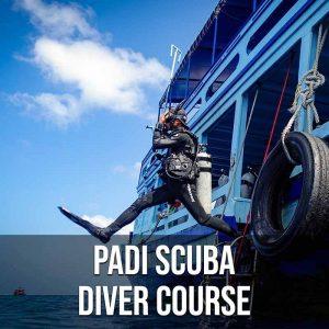 Padi Scuba Diver Course