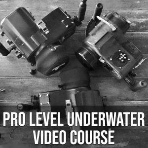 Pro Level Underwater Video Course
