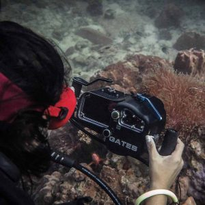 Basic PADI Underwater Videography Course